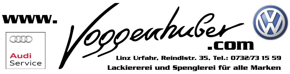 LOGO Voggenhuber4